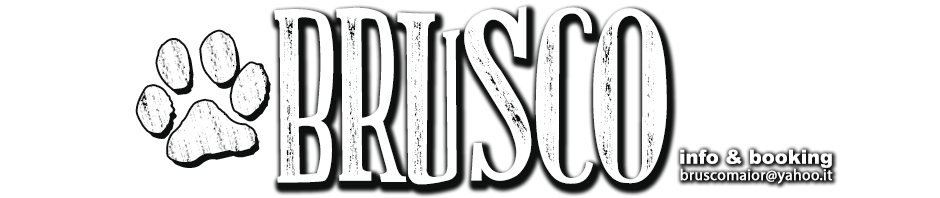 brusco-logo-homepage